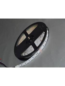 Strip Led SELS-5050RGB30-12A-IP20 - 14W/m - LED 5050 - RGB - Striscia Led 5m